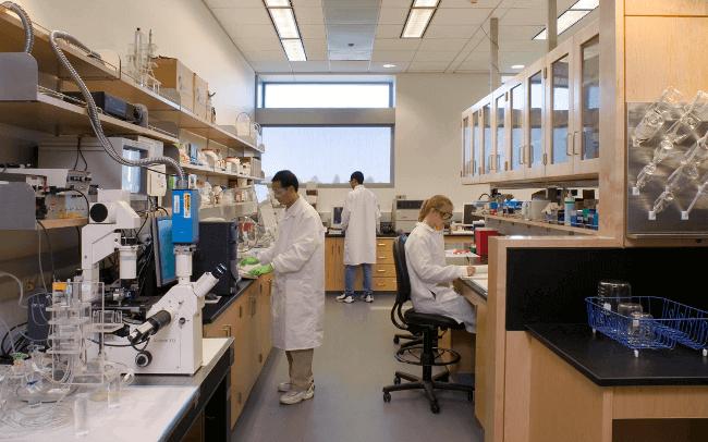 Dünyanın Biyomedikale Bakışı Nasıldır? Ülkemizde Durum Nedir?