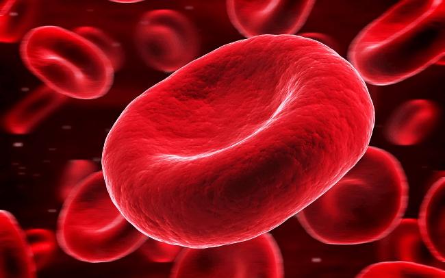 Kan Gazı